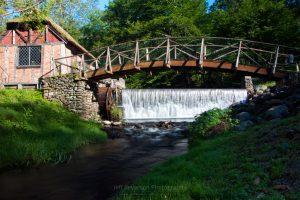 Sunny Spring Morning at Gomez Mill