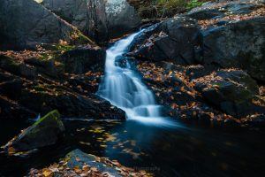 The Falls of Black Creek in Autumn II