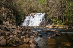 Laurel Falls in Spring I