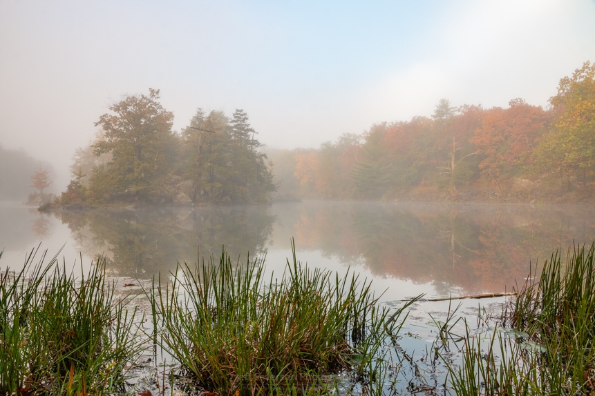 Foggy Morning at Sanctuary Pond