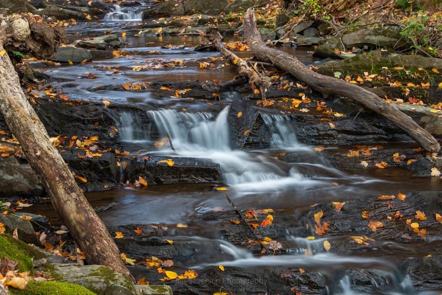 October Morning at Falling Waters