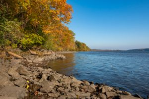 A photo of trees covered with autumn foliage along the shores of the Hudson River at Falling Waters Preserve.