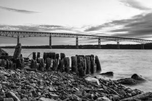 A black & white photo of the old wooden pilings along the shore of Charles Rider Park on a January morning.