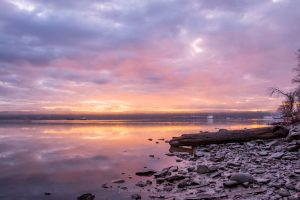 Pastel colored clouds reflected on the Hudson River during sunrise along the shoreline of Esopus Meadows Preserve.