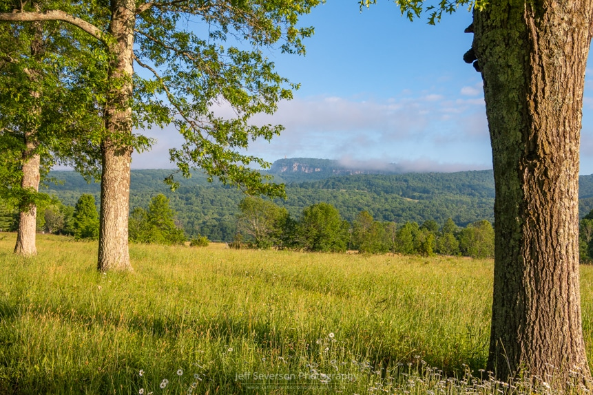 A landscape photo from along Pin Oak Allee at Mohonk Preserve of Skytop Tower and the cloud-shrouded Shawangunk Ridge on a June morning in New Paltz, NY.