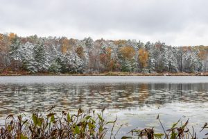 A photo of snow covered trees and bank of Louisa Pond at Shaupeneak Ridge after an autumn snowstorm.