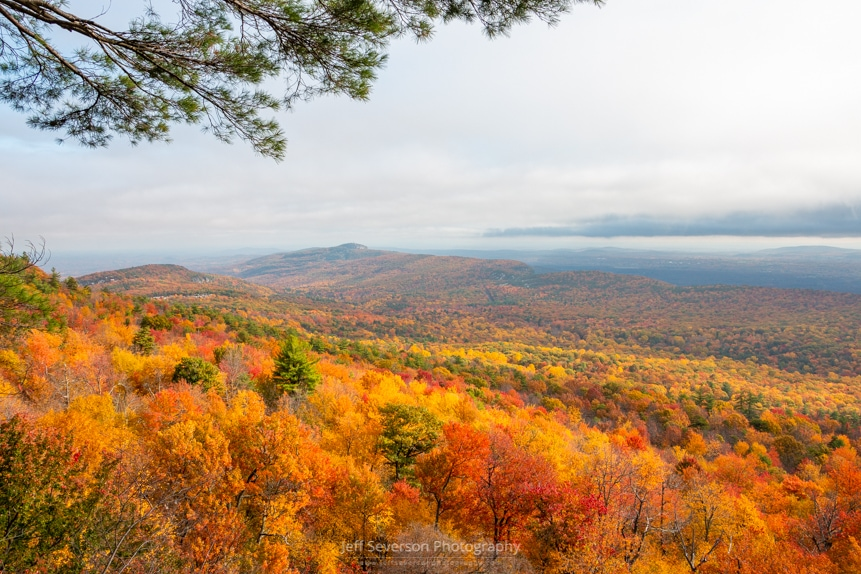 A landscape photo of fall foliage highlighted by the sun breaking through the clouds at Minnewaska State Park Preserve.