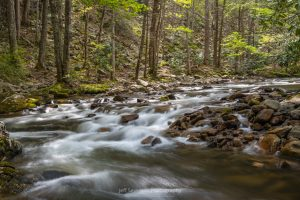 A photo of the Laurel Fork along the Appalachian Trail as it winds its way through the Cherokee National Forest near Hampton, TN.
